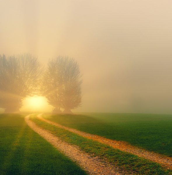 Kabbala – Dein Seelenplan Online-Seminar in 8 Modulen
