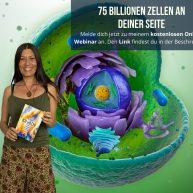 75 Billionen Zellen an deiner Seite GRATIS Webinar